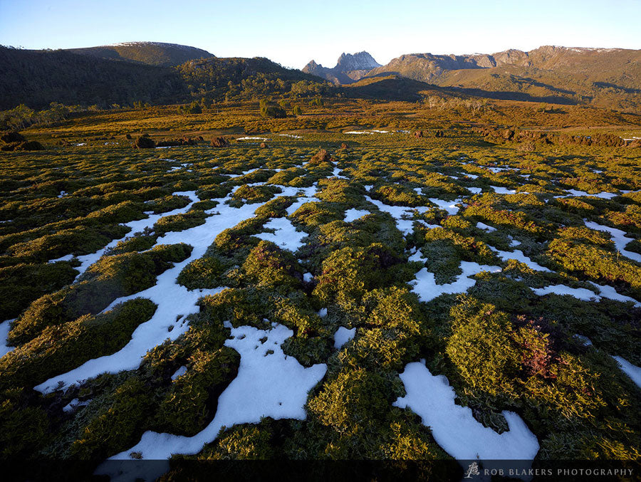TM80 :: Cradle Mountain