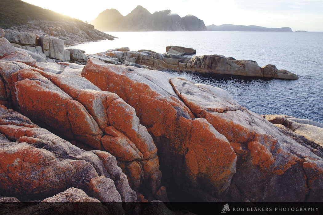TO75 :: Lichen on granite, Freycinet NP