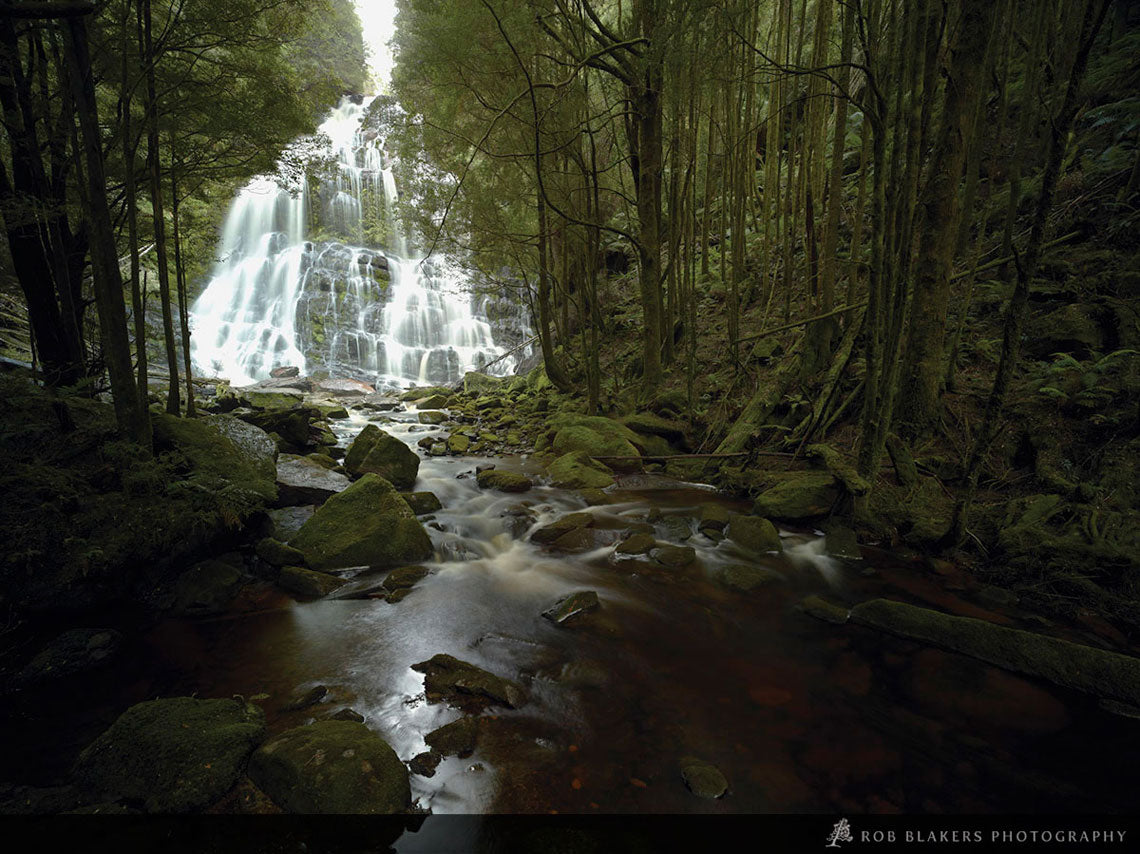 TR39 :: Nelson Falls, Lyell Highway