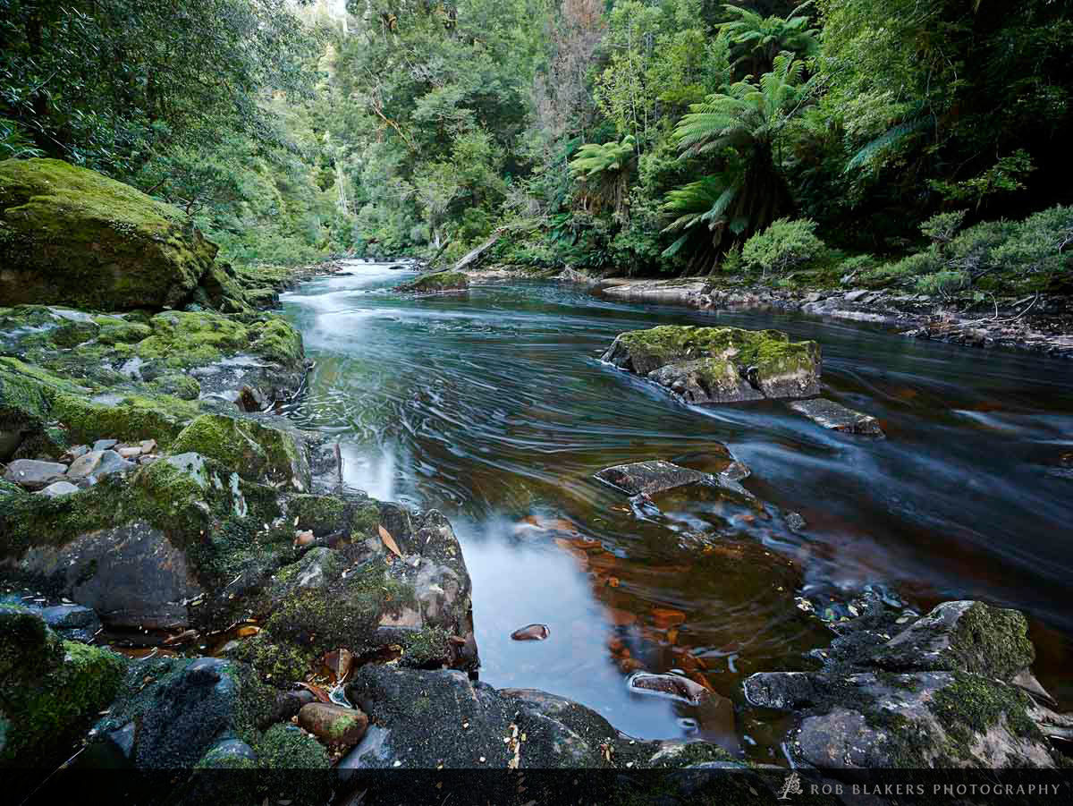 TR48 :: Rapid River 2, Tarkine