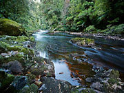 Rapid River 2, Tarkine