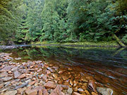 Rapid River 3, Tarkine