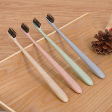 Biodegradable Toothbrush - Festival Professional