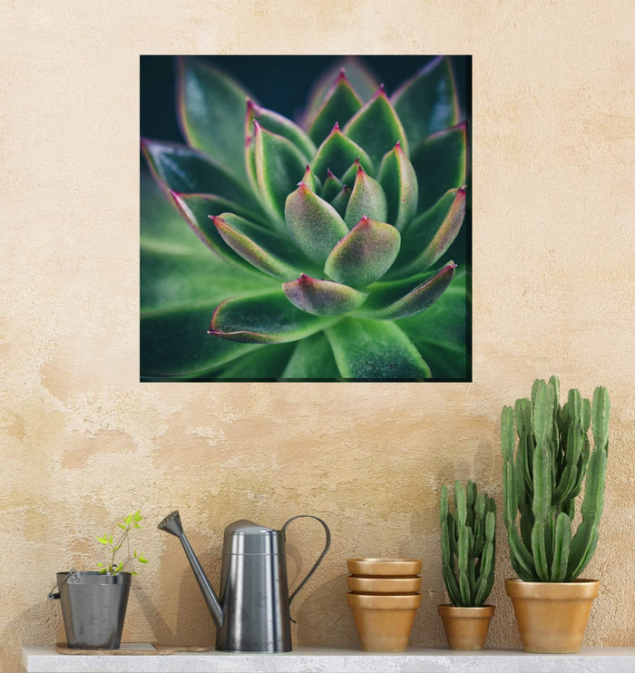 Outdoor Canvas Art 24x24 All Aglow - My Backyard Decor