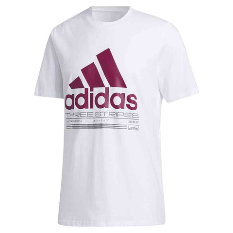adidas Camiseta Amplifier Graphic Tee Hombre - Blanco/Morado