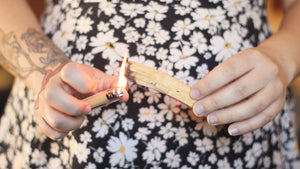 "Palo Santo Stick- 4"" Holy Wood from Brazil"