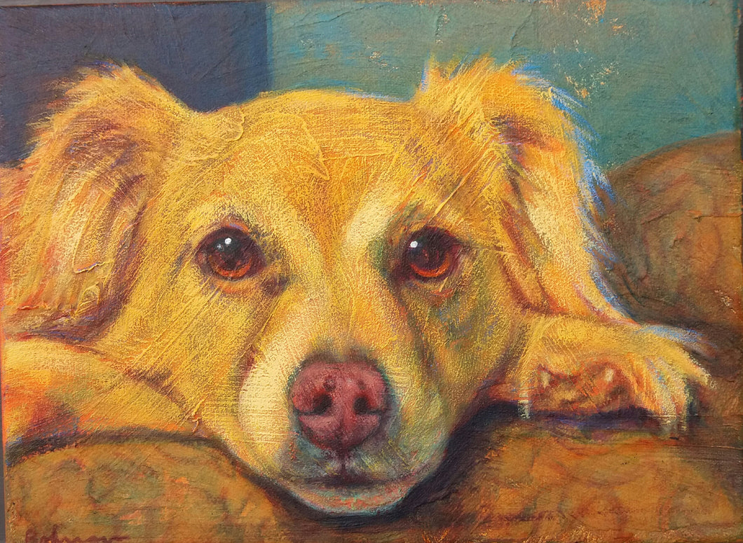 Pet portrait customer sample -