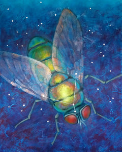 Photon Fly (constellation Musca Borealis)