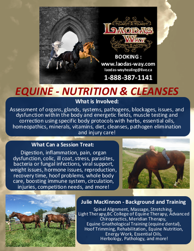 EQUINE Nutrition & Cleanses