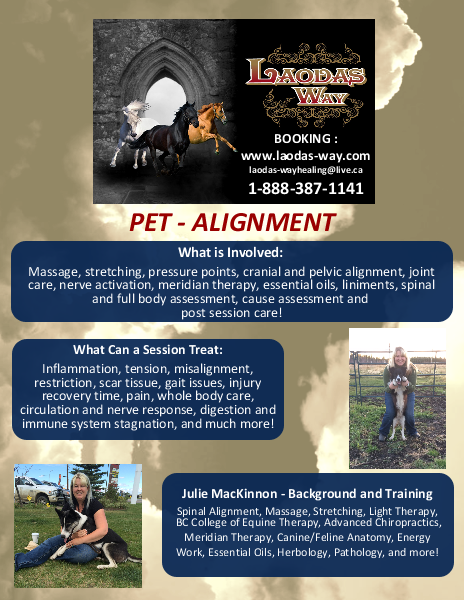 PET Alignment