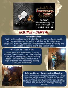 EQUINE Dental