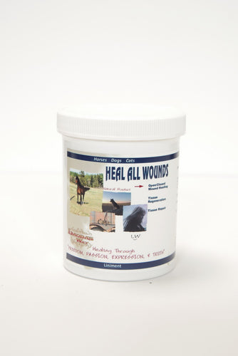 HEAL ALL WOUNDS - Salve