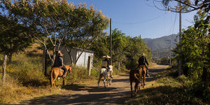 horseback riding teotitlan del valle