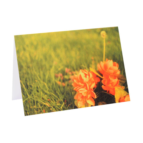 Greeting Card Film Photography | Bright Pink and Green Flowers | Blank Inside