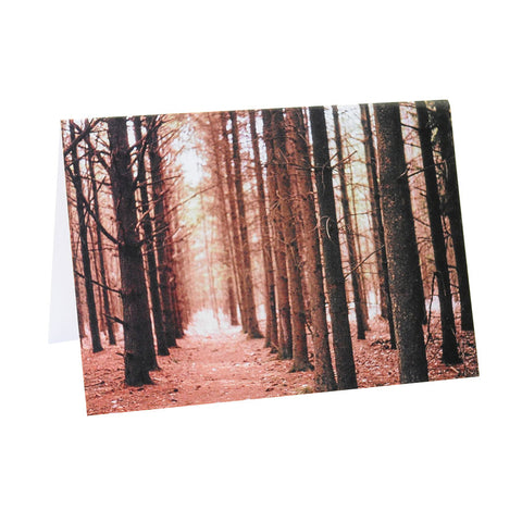 Greeting Card Film Photography | Magic Forest | Blank Inside