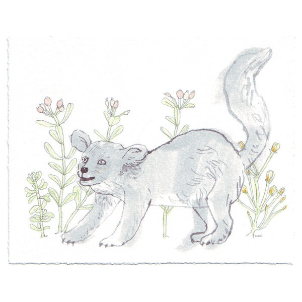 Original Drawing by Marie Gardeski | Happy Animal