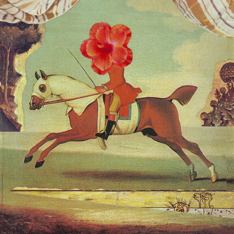 Collage | Equestrian Flower Print by David Birkey