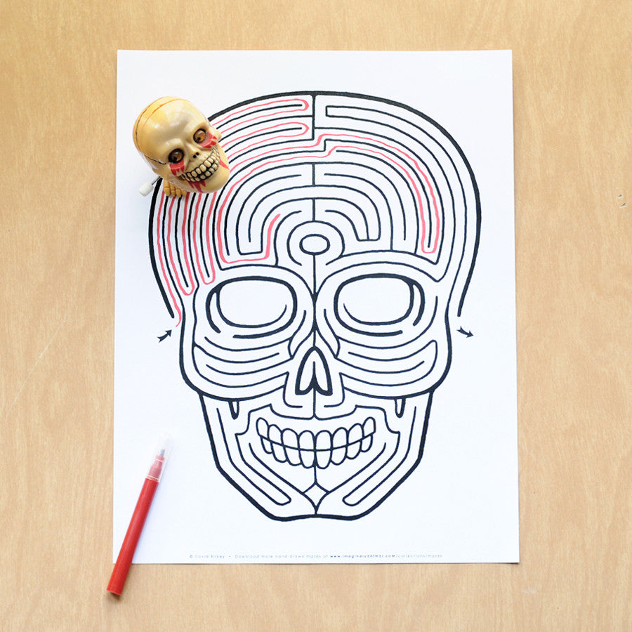image relating to Printable Skull titled Skull Maze Quick Obtain Printable PDF Imaginary Animal