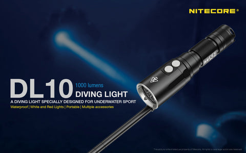 DL10  Dive torch