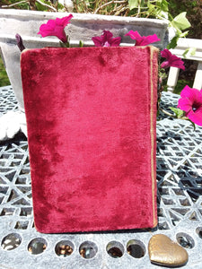 Velvet & Celluloid Shakespeare Book