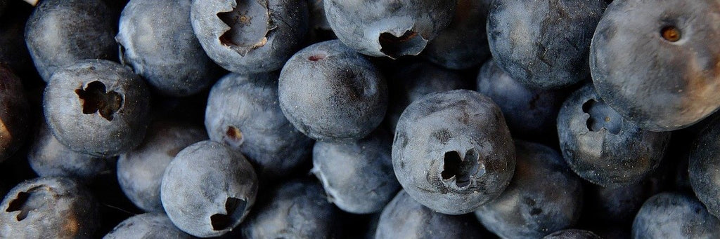 Blueberries - Stock Photography - Fruits and Vegetables Stock Photos - Photo Redesign