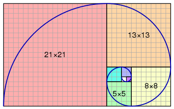 Fibonacci Spiral Numbered
