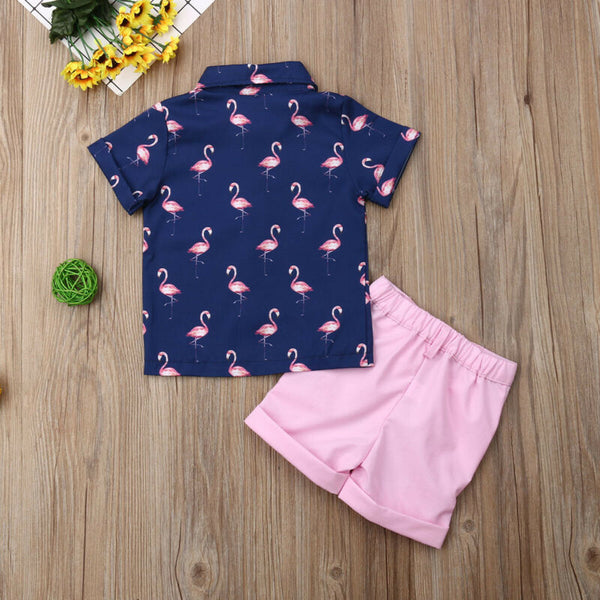Boys Flamingo and Light Pink Short Set - loopylousboutique
