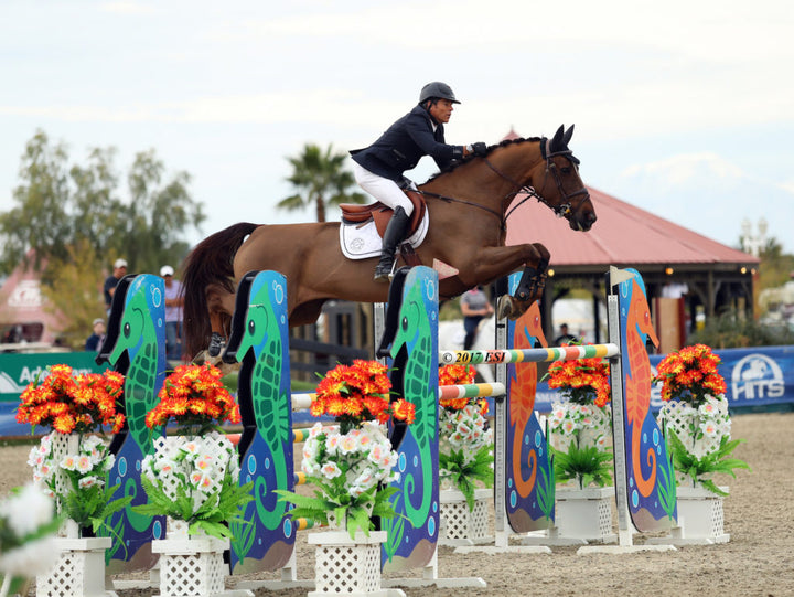 Week III Winner: Chris Pratt & Concorde Victorious in $75,000 Purina Animal Nutrition Grand Prix at HITS Coachella