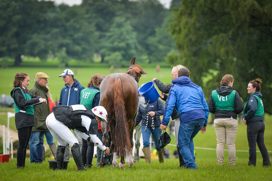 Take It From the Eventers: How to Manage Your Horse Before, During, and After Intensive Competition