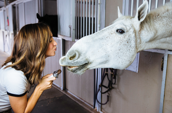 Stressed About Supplements? Platinum Performance Debunks How To Make The Right Nutritional Choices For Your Horse