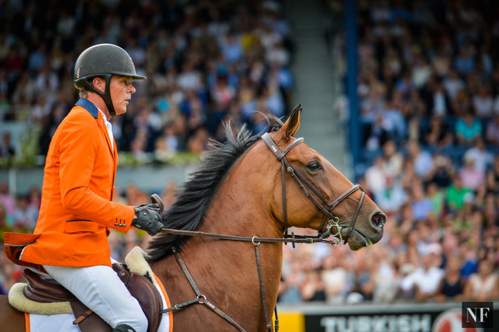 Jeroen Dubbeldam will ride SFN Zenith N.O.P. (pictured) in show jumping at the Rio Olympic Games.