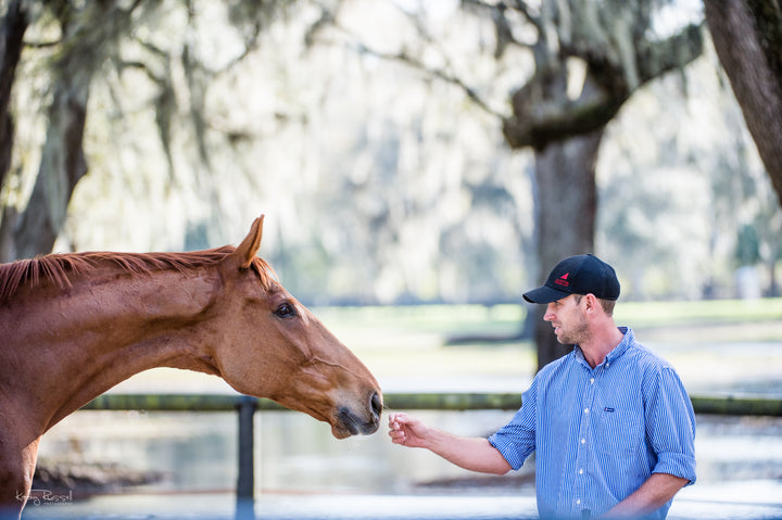 Be a Good Friend: 5 Ways to Improve Your Relationship with Your Horse
