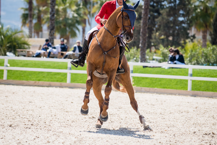 Cool Your Jets: 4 Tips for Working With Hot Horses