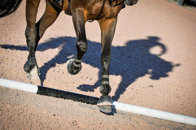 Reset Your Riding: Gail Greenough's Favorite Back-in-the-Saddle Tuneups