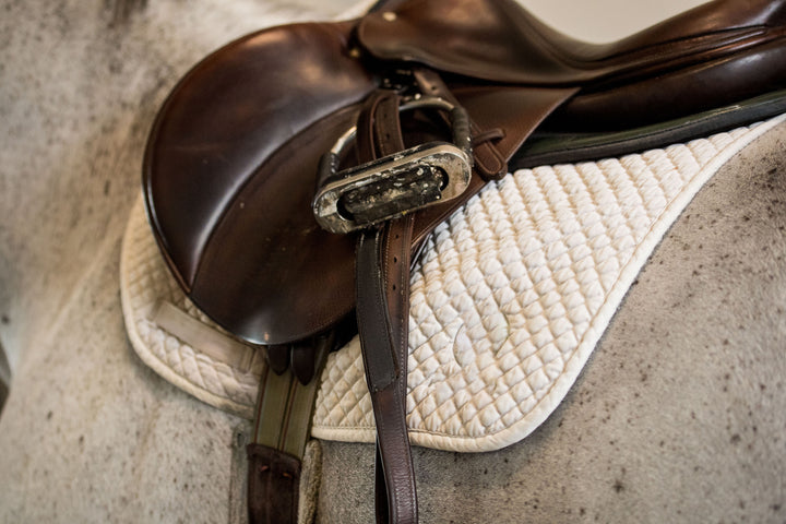 'After a Custom Saddle Sidelined My Horse, I'm Unsure if My New Saddle Clears Her Withers Enough.'