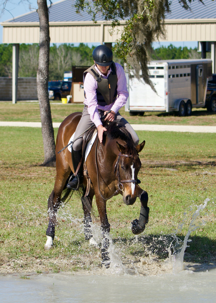 Hot Take Letting Your Green Horse Refuse Jumps Can Actually Pay Off L Noelle Floyd