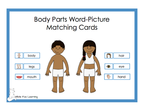 Body Parts Word-Picture Matching Cards - Digital Product