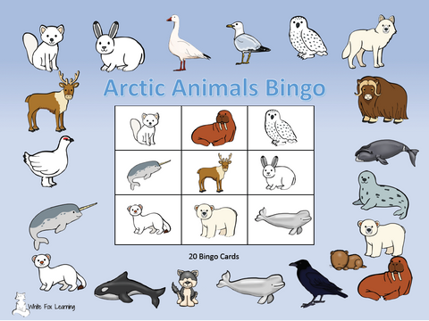 Arctic Animal Bingo - Digital Product