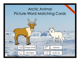 Arctic Animals Matching Cards - Printed Product