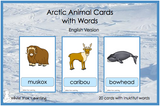 Arctic Animals Cards with Words - Digital Product