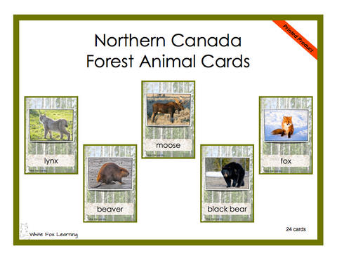 Northern Canada Forest Animals Cards - Printed Product