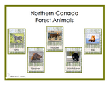 Northern Canada Forest Animals Cards - Digital Product