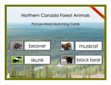 Northern Canada Forest Animals Picture-Word Matching Cards - Printed Product