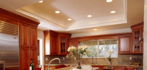 EarthLED offers the best price on LED Recessed downlight replacements. Replace 4 inch and 6 inch downlights with a long lasting LED replacement. & LED Downlights | Recessed LED Lighting u2013 EarthLED.com