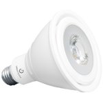 GREEN CREATIVE Titanium LED - 14 Watt - PAR30 Long Neck - 75 Watt Equal