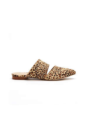Berlin Leopard Slides by Matisse