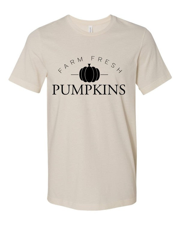 Farm Fresh Pumpkins - Cream