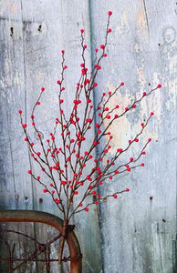 Berries Bush - 22""