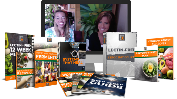 Lectin Free Transformational Program - Now only $695