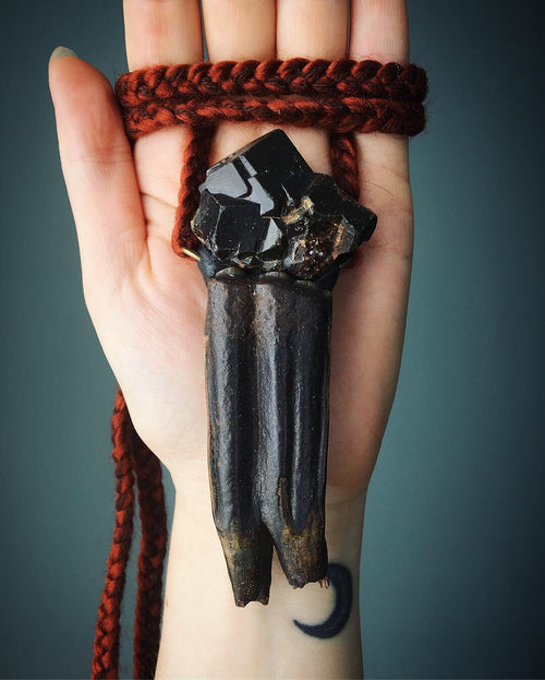 XL Equus Tooth Fossil with Black Garnet Talisman